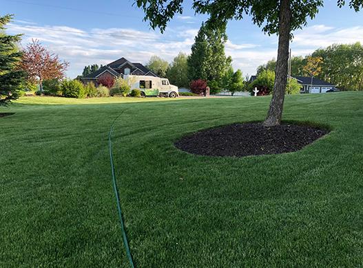 LawnServices