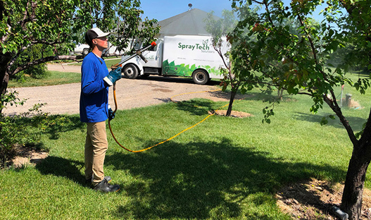 TreeServices-img